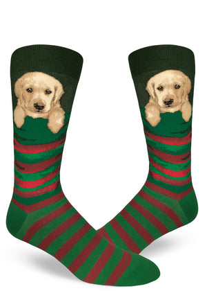 Adorable Christmas socks for men with yellow Labrador puppies in Christmas stockings.