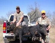 ALL INCLUSIVE $599 ~ 3 Day Hog Hunt