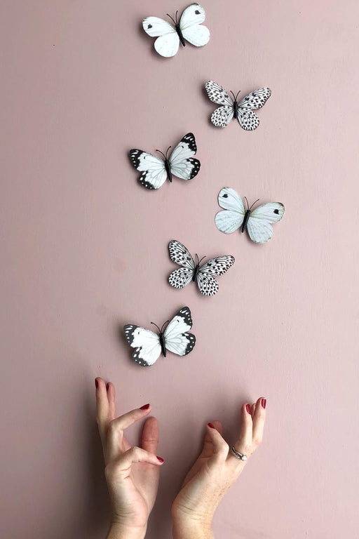 3D Butterfly, Decor, Little Rae Prints - 3LittlePicks