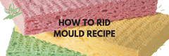 How to Rid Mould Recipe