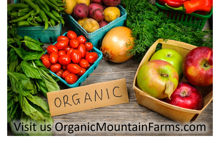 Why Organic Vegetables?