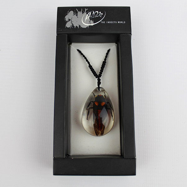 Real Insect 'Red Cicada' Clear Necklace