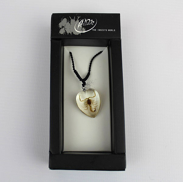 Real Insect 'Scorpion' Clear Love Heart Necklace