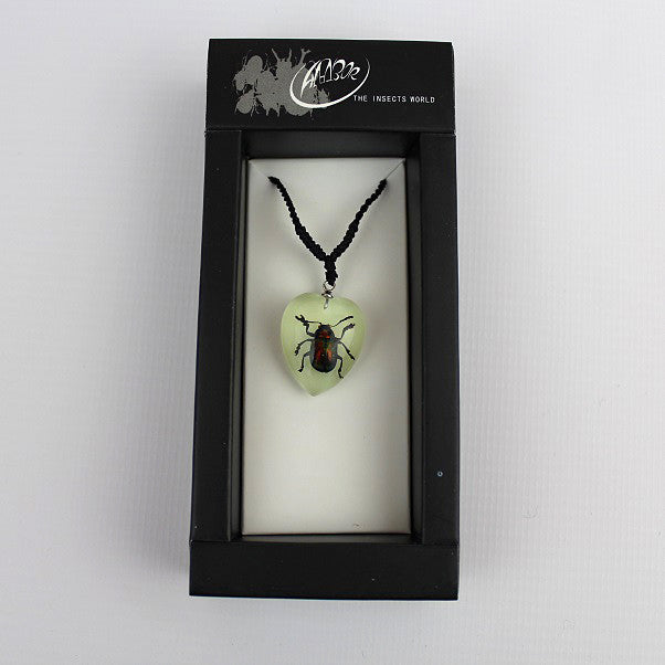 Real Insect 'Shining Leaf Beetle' Glow Love Heart Necklace