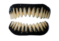 BLACK GUMMED RAPTOR FX Fangs 2.0 by Dental Distortions