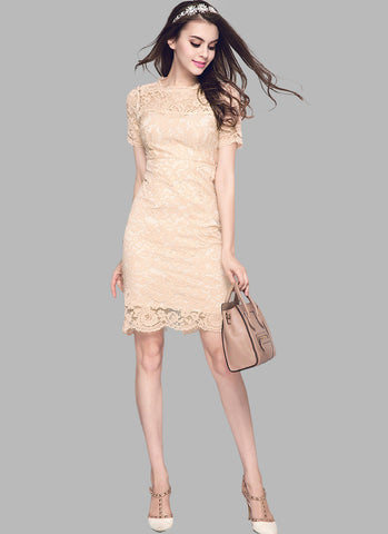 Champagne Lace Mini Sheath Dress with Bow Embellished Back RD548