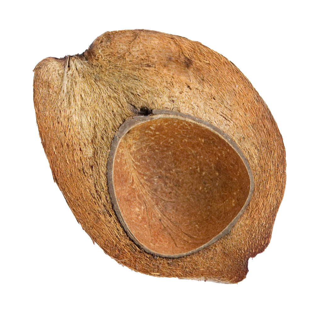 Coconut Shells - Halved and Shaved