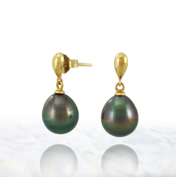 Tahitian pearl earrings in gold plated - Timeless Elegance - EAGPPE00010