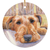 "Irish Terrier Christmas Ornament ""Watching & Waiting"""