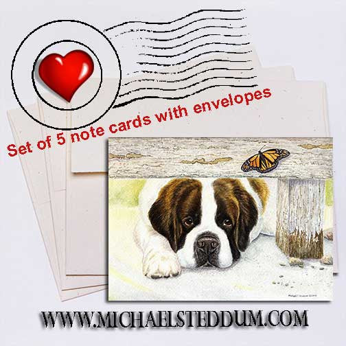 """Where is It?""	Saint Bernard Note Card Set"