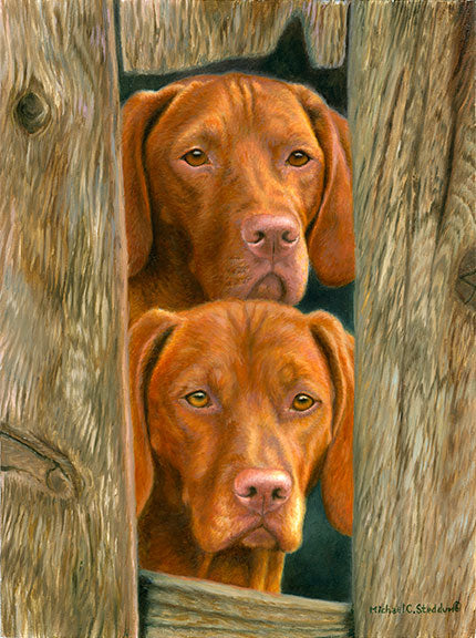 """On Duty"" Limited Edition Vizsla Print"