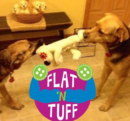 Large Flat 'n Tuff for City of Dunn Animal Control