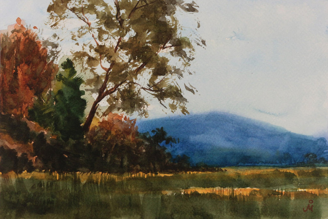 Landscape painting of morning light falling on tall trees and the grassy meadow at Jim Corbett National Park.