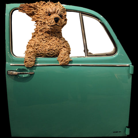 Golden Doodle in a Teal VW Door