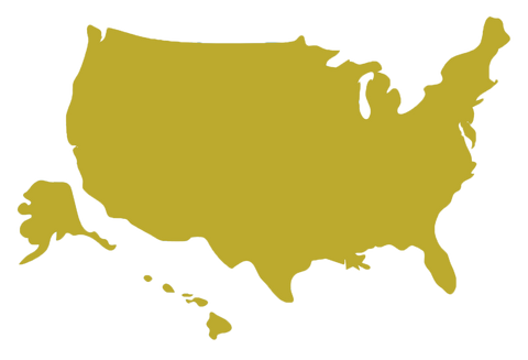 united states gold map silhouette