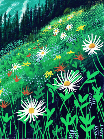 Bloom on Grouse by Ryan Nickerson. A painting showing a green meadows with flowers.