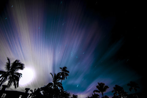 Florida Night Sky by Barry Khan. Colour photographs of a night sky with palm trees.