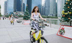 The Role of Bike Sharing in Singapore