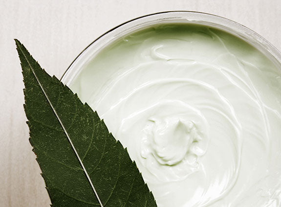 The Nature of Beauty Lotion and Leaves