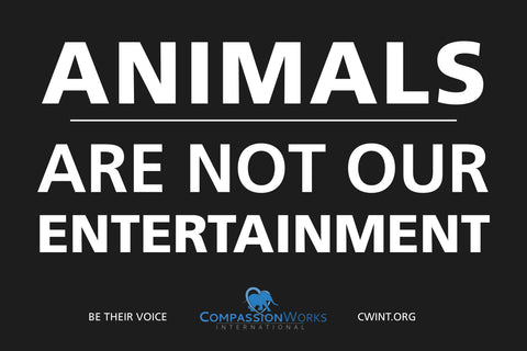 Animals Are Not Our Entertainment protest poster