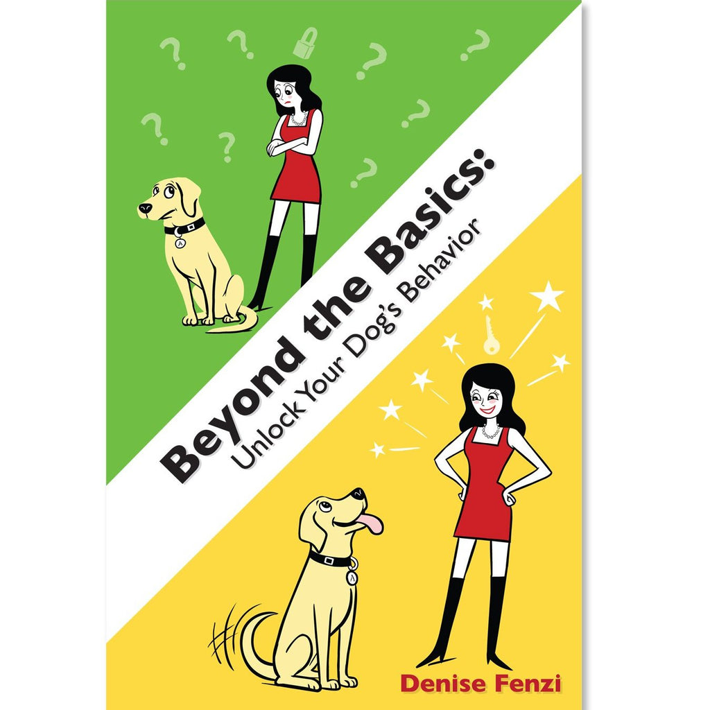 Beyond the Basics:  Unlock your Dog's Behavior