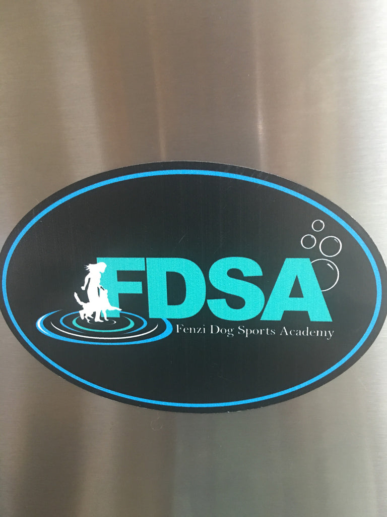 FDSA Car Magnet