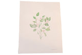 "Katelyn Morse Original Painting ""Growth"" Botanical // ONH Item 7106"