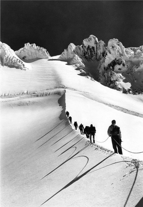 Mazamas Making Their Way up the Hogsback towards the Summit of Mt. Hood, 1963