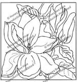 P503: Magnolia, Offered by Honey Bee Hive
