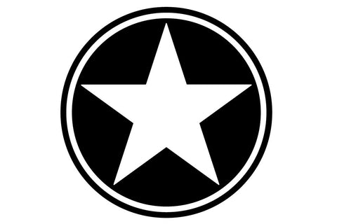 13 inch Freedom Military Star Hood Decal