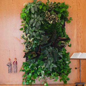 Wally Pocket - Living wall planter!