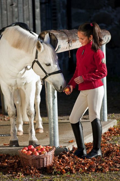 Pantalon Equitacion Mountain Horse Allison Breeches FS JR