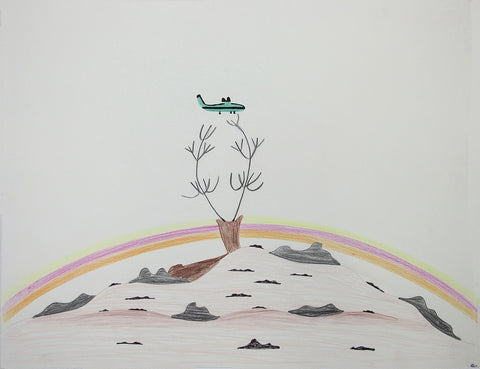 Untitled (Caribou & Plane)