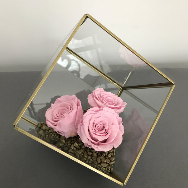 Everlasting Terrarium Mini Rose Garden