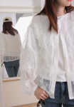 Ruffle Trim See Through Lace Blouse