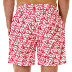 Mens Trunks (Shark, Faded Red) Back