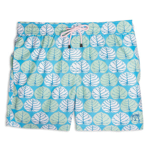 Mens Trunks (Seagrape, Blue/Green)