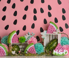 Photography Backdrop Background | Watermelon Party