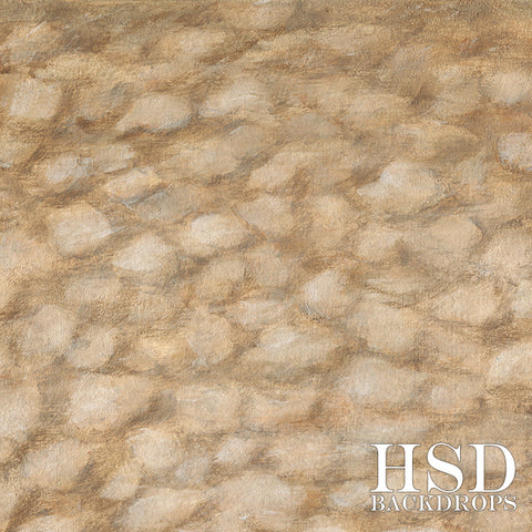Photography Backdrop Background | Cobblestone Road