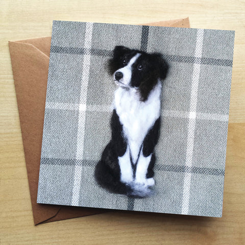 Border Collie Greetings Card by Sharon Salt