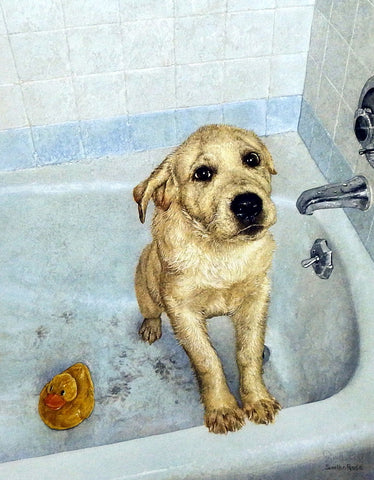 Sueellen Ross Bathtime Blues