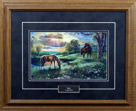 Jim Hansel Spirit- Framed