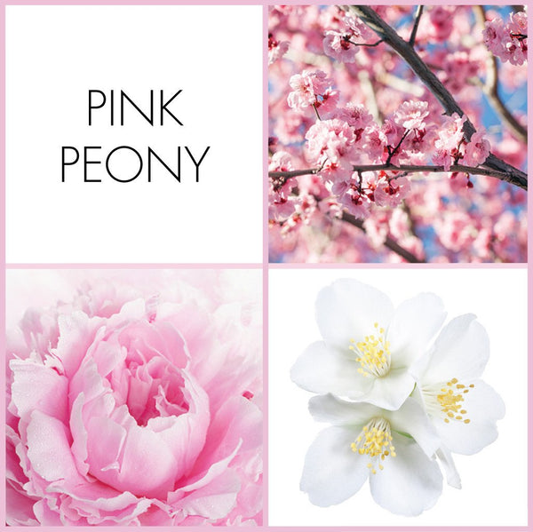 Pink Peony Fragrance | NOTE Fragrances