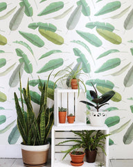 Glorious Green: Bring Nature's Most Beautiful Shade to Your Home