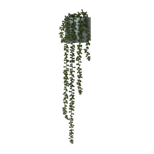 String Of Pearls Large Faux Plant