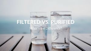 Water Filtration and Water Purification: Similar, but Not the Same