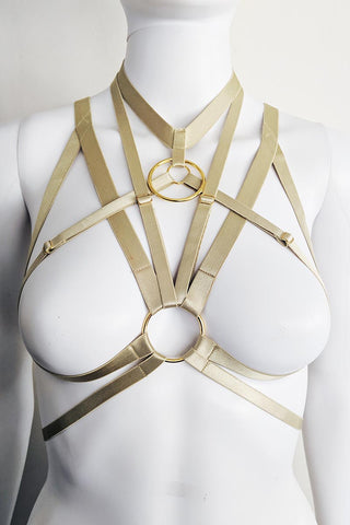 Dark Star Cage Harness