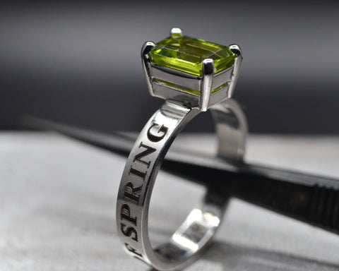 Paul's Engagement Ring