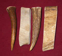 Large Moose Antler For Dogs Up To 50 pounds. NOW Available in 5 Flavors!!
