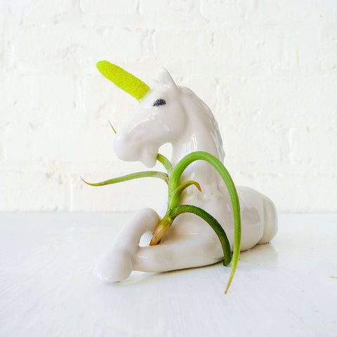 30% SALE Magic Unicorn Air Plant Garden Planter
